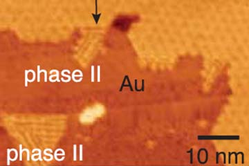 Figure-Bottom-up synthesis yields new single-layer vanadium disulphide phase