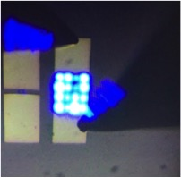 Fitzgerald LED array on silicon